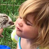 Tiny Tails Petting Zoo at Brentwood Social House