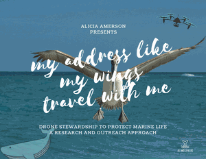 "Alicia Amerson: ""My Address Like My Wings Travel With Me: Drone Stewardship to Protect Marine Life"""