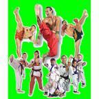Ernie Reyes World Martial Arts