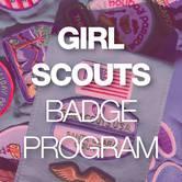 Girl Scout Badge Program   Brownies