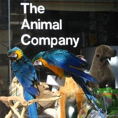 The Animal Company
