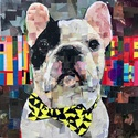 Collage Animal Portraits with Samuel Price