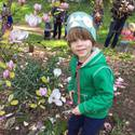 Tree Time! Preschool Walks