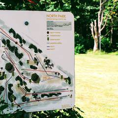Free: Learn to Disc Golf
