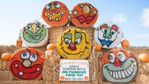 Bauman's Farm & Garden Harvest Festival