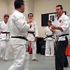 Shorin-Ryu Karate Academy