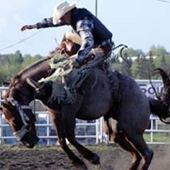 Rainmaker Rodeo