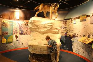 Discovery Nights: Reduced Admission