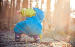 9 Kid-Friendly Hikes in the Seattle Area