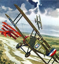 100th Anniversary of the Red Baron's Last Dogfight