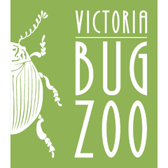 Victoria Bug Zoo