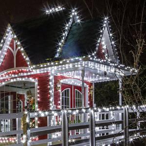 Christmas Tree Lighting & Holiday Marketplace