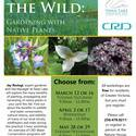 Embracing the Wild: Gardening with Native Plants