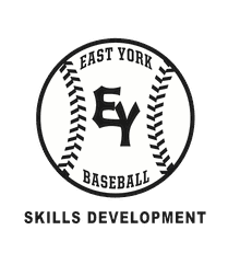Spring Baseball Skill Development Clinics