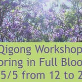 Qigong Workshop: Mindful Movement