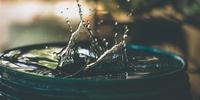 Backyard Rainwater Management