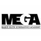 Mega Gymnastics