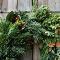 Winter Wreath Workshop by Florence + Flora