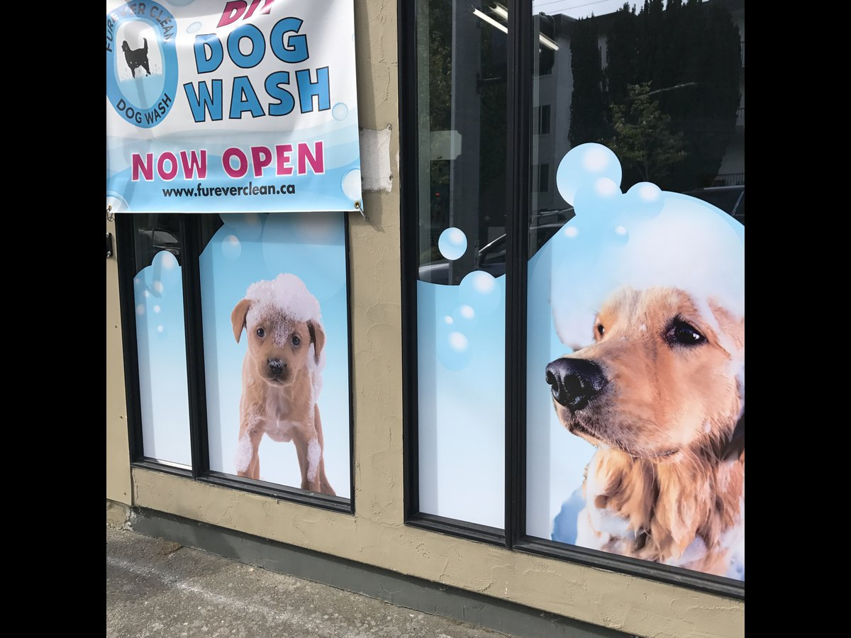 Furever clean dog wash inc avoid the mess of washing your pooch at home come to the furever clean dog wash store we offer a self serve dog wash which provides dog owners with an solutioingenieria Image collections
