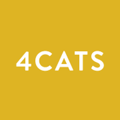 4Cats Arts Studio 4Cats