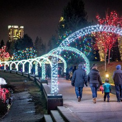 Lights at Lafarge Winter Lights