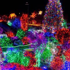 Zoo Lights at Point Defiance
