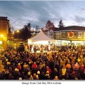 Christmas Festival Light Up in Oak Bay
