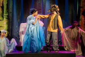 Arts in the Parks: A MidSummer Night's Dream