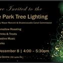 Shubie Park Tree Lighting