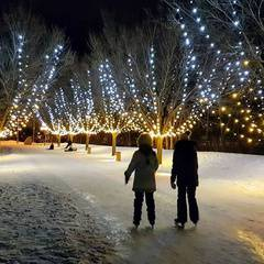 Ice Skating In the Enchanted Lighted Forest