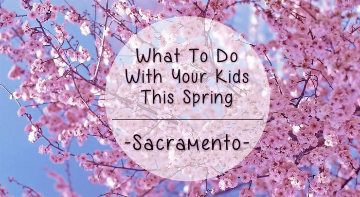 15 Things To Do With Your Kids This Spring In Sacramento