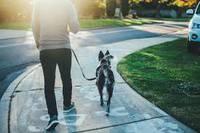 FIRST STEP TOWARD A HEALTHY LIFE