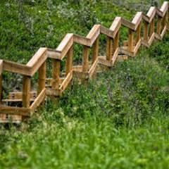 Bowmont Park Natural Area
