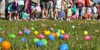 Easter Egg Hunt at Fern Bluff Park