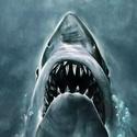 Sunset Cinema: Jaws