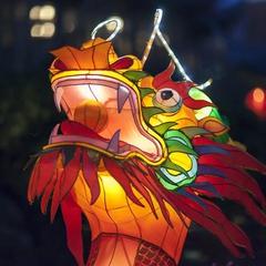 Lantern Viewing Evenings