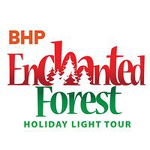Enchanted Forest Holiday Light Tour