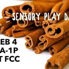 Sensory Play Day (Feb)