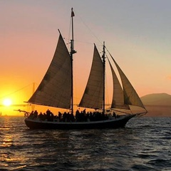 New Year's Weekend Sunset Sails on San Francisco Bay