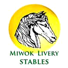 Miwok Livery Summer Camps