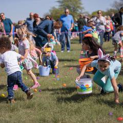 St. Andrew UMC Annual Egg Hunt - more than 5,000 eggs, bounce house midway, pony rides, petting zoo and more