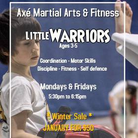 Axe Martial Arts and Fitness's promotion image