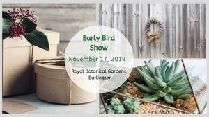 ABAZ - Early Bird Show