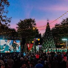 Tree Lighting Ceremony & Photos with Hello Kitty