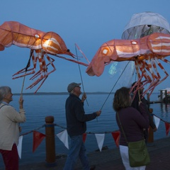 Salish Sea Lantern Festival