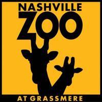 Visit the Nashville Zoo