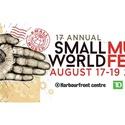 Small World Music Festival