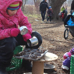 Downsview Park Nature Connection- Nature Play
