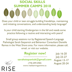 Social Skills Summer Camps