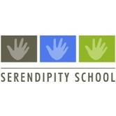 Serendipity School